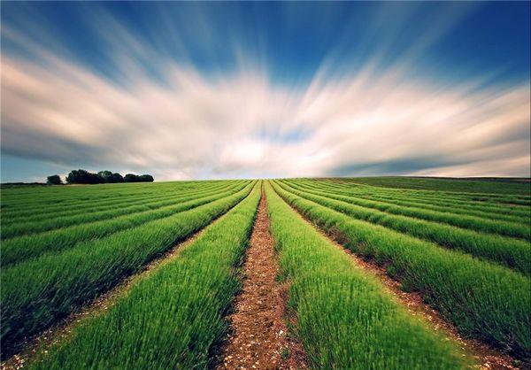توصیه های هواشناسی کشاورزی برای 3 تا 6 آبان ماه