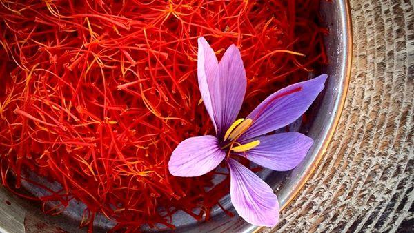 صادرات بیش از ۴۹ میلیون دلاری گل و گیاهان دارویی در سه ماهه نخست ۱۴۰۰
