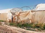 خسارت های طوفان به کشاورزی فسا برآورد شد