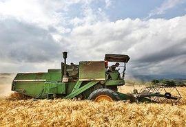 ۹ هزار و ۷۵۰ تن گندم و کلزا از کشاورزان آبیک خریداری شد
