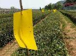 کاربرد عوامل کنترل غیر شیمیایی آفات گیاهی در سپیدان