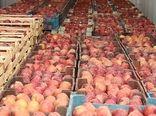 افزایش 18 درصدی صادرات محصولات کشاورزی و صنایع تبدیلی