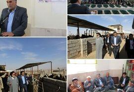 دهگردشی و بازدید رییس سازمان و نماینده ولی فقیه در سازمان از فعالیتهای کشاورزی شهرستان زیرکوه