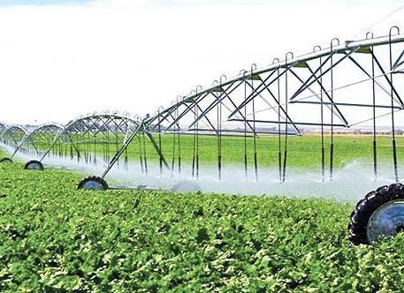 مصرف آب دربخش کشاورزی استان تهران کمتر از ۴۵ درصد است