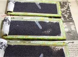 توزیع ۵۰۰ جعبه تخم نوغان در شهرستان اسفراین