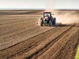 اجرای طرح جهش تولید در مزارع دیم ایلام