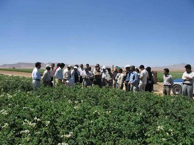 توسعه کمی و کیفی آموزشهای کشاورزی در سال 1396/ نظارت و ارزیابی آموزشهای ارائهشده