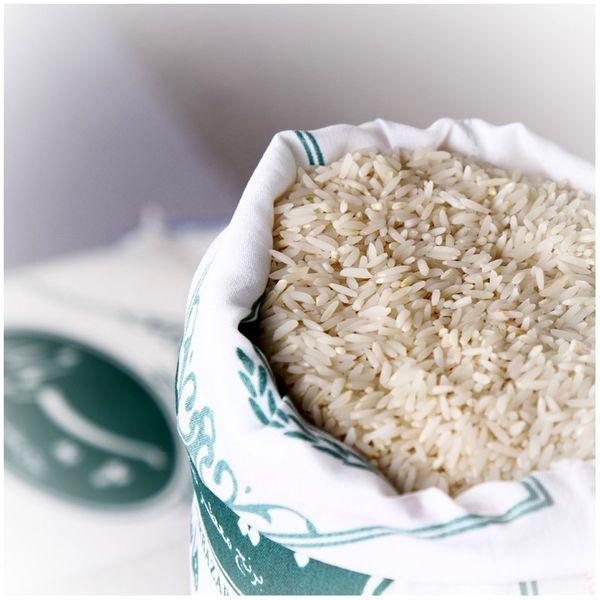 تأمین برنج 25 میلیون ایرانی در مازندران/ برنج مازندران کاملاً سالم است