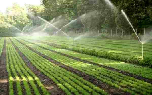تجهیز بیش از 4 هزار هکتار کشاورزی تهران به سیستم نوین آبیاری