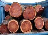 توقیف ۲ خودروی حامل چوب قاچاق در قزوین