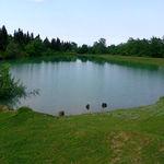 احیای آببندانها برای ذخیره آب کشاورزی و کنترل سیلابها