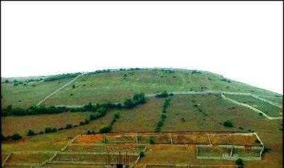تعیین تکلیف ۱۶۹ فقره  پرونده اراضی ملی در کردستان