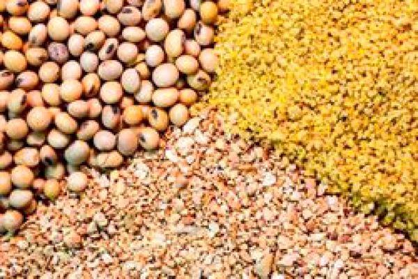 راه اندازی سامانه بازارگاه محصولات و نهاده های کشاورزی