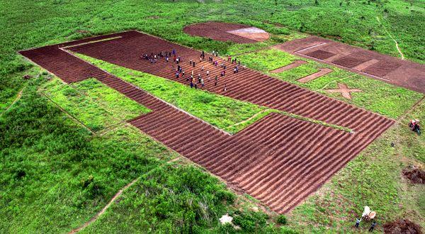 کشاورزان آفریقایی پیام مهمی را برای رهبران جهان در زمین های کشاورزی شان حک کردند