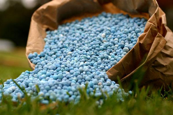 کمبود کودی برای کشت پاییزه وجود ندارد/ تأمین 79 هزار تن نهاده کشاورزی در مازندران