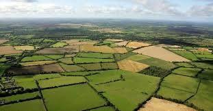 قیمت محصولات کشاورزی و دامی باید واقعی شود