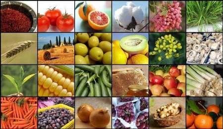 تولید سالانه بیش از ۶۰۰ هزار تن محصول باغی در استان قزوین