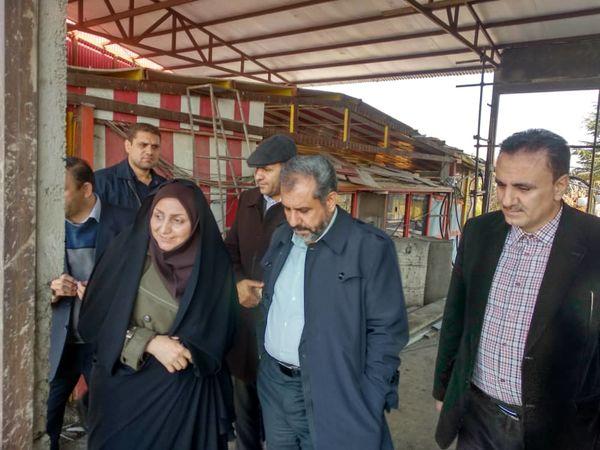 بازدید استاندار قزوین از یک واحد کشت و صنعت گاوداری در قزوین