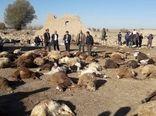 برآورد خسارت 30 میلیارد تومانی زلزله به بخش کشاورزی آذربایجان شرقی