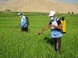 کانونهای زمستانگذران ملخها در شهرستان ری پایش میشود