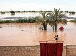 تمام کشاورزان خسارتدیده خوزستانی غرامت دریافت خواهند کرد