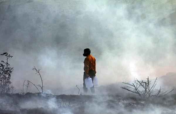 مراتع سرخدره در شاهرود آتش گرفت؛ حریق مهار شده است
