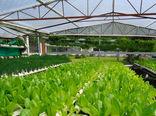 افتتاح 35 پروژه کشاورزی لرستان در هفته جهاد کشاورزی