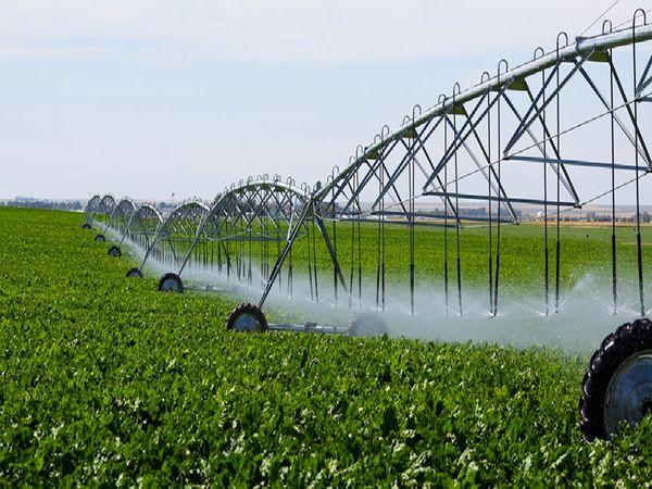 راندمان آبیاری در بخش کشاورزی سالانه 1 درصد رشد داشته است
