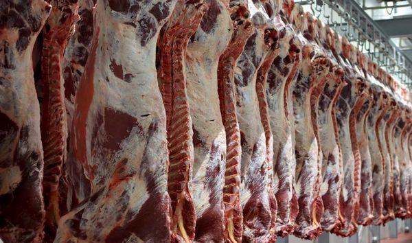 سالانه بیش از ۸ هزار تُن گوشت در بوکان تولید میشود
