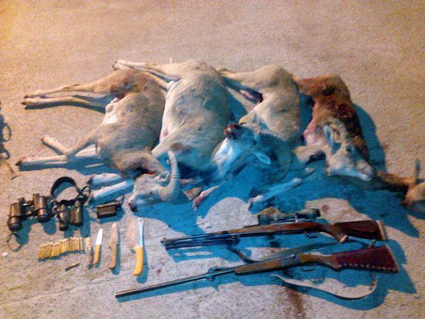 باند 5 نفره شکارچیان در منطقه شکارممنوع خنار سمنان دستگیر شدند