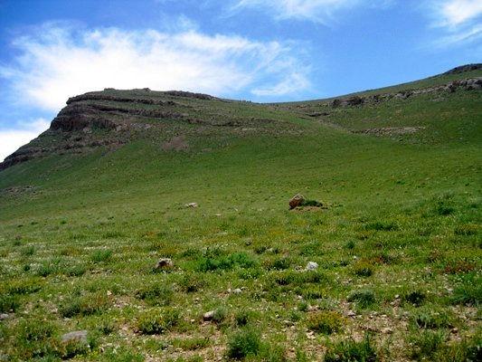 بازپس گیری ۱۶۰۰ هکتار از اراضی ملی آذربایجانغربی