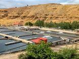 جهش ۲ برابری تولید ماهی در اصفهان با برنامههای علمی