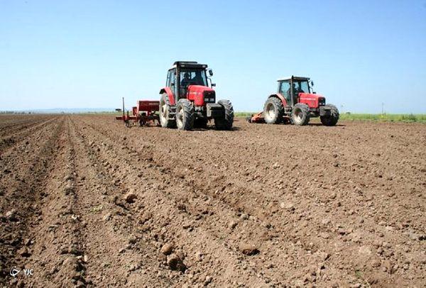 کشت گندم در بیش از ۴۸ هزار هکتار از اراضی زراعی مهاباد
