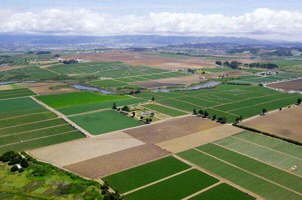 100 هزار هکتار از اراضی ملی در شهرستان های کوهرنگ و بروجن کاداستر می شود