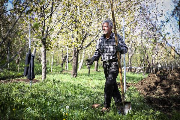 پیشنهاد کمک بلاعوض 5 میلیون تومانی به کشاورزان
