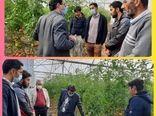 بازدید از گلخانه گوجه فرنگی روستای ارسطو درراستای تسهیل و رفع موانع تولید