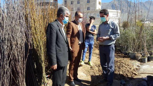 بازدید مدیر حفظ نباتات استان از فروشندگان نهال شهر خرم اباد