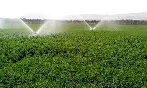 امسال ۷۵ هزار هکتار از اراضی کشاورزی به سیستم نوین آبیاری مجهز شده است