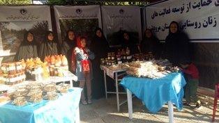مرودشت صدرنشین توسعه صندوق اعتباراتخرد زنان روستایی در فارس