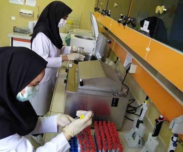 تست تشخیص بیماری مشمشه در آزمایشگاه دامپزشکی کرمان راه اندازی شد