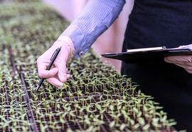 طرح «یاوران تولید» مقدمه کشاورزی علمی است