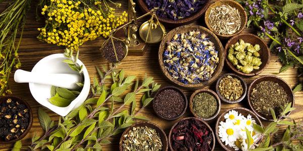تولید 18 هزار و 721 تن انواع گیاهی دارویی در سال 99 در استان آذربایجان شرقی