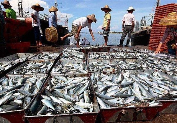 در آبهای ایران کشتی باپرچم چین صید نمیکند