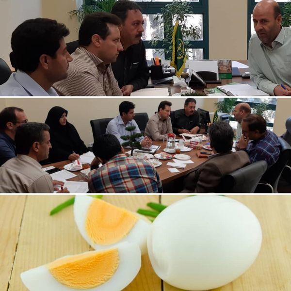 سرانه مصرف تخم مرغ  در کشور ۱۹۰ تا ۲۰۰ عدد است