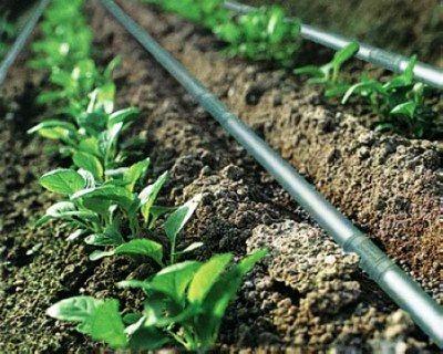 بهرهبرداری از 6 طرح آب و خاک در هفته دولت