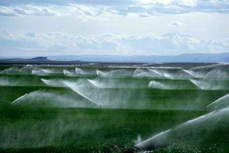 اجرای سیستم آبیاری تحت فشار در اراضی کشاورزی استان البرز