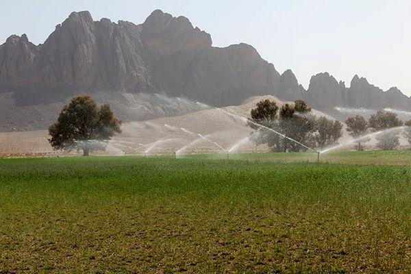 تاکنون 34 هزار هکتار از اراضی سیستان و بلوچستان به سیستم نوین آبیاری مجهز شده است