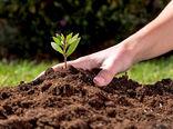 4 راهکار اصلی برای کاهش میزان فرسایش خاک در کشاورزی
