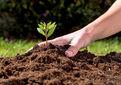 خاک بسیاری از مناطق کشور تهی شده است