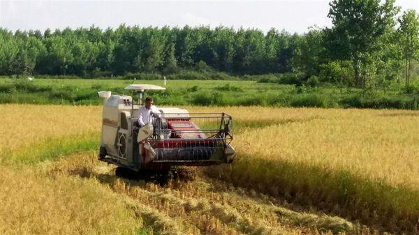 جذب بیش از 37 میلیاردی تسهیلات بانکی توسعه مکانیزاسیون کشاورزی در شفت